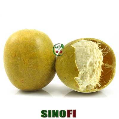 Monk Fruit Extract 02