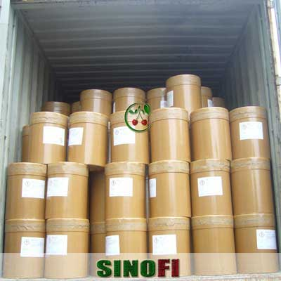 Ethyl Vanillin powder 04