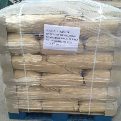 E401 Sodium Alginate powder 02
